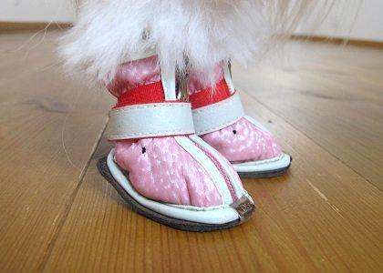 オリジナルの犬靴の履き方