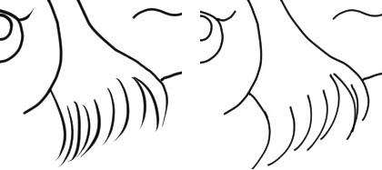 線画のテスト_ミリペンとGペン拡大図