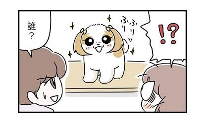 初めてのトリミングe 4コマ犬漫画 ぷりんちゃんねる