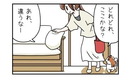 どれどれ、ここかな?ソファのクッションを触る。あれ、違うなー