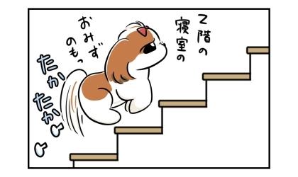 2階の寝室のお水を飲もう。階段を昇っていく犬