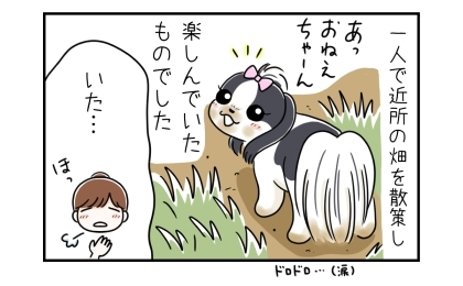 脱走した犬は一人で近所の畑を散策し、楽しんでいたものでした。いた…。犬を見つけてほっとする私
