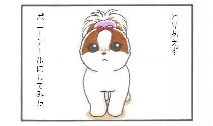 垂れ耳犬の対策-1