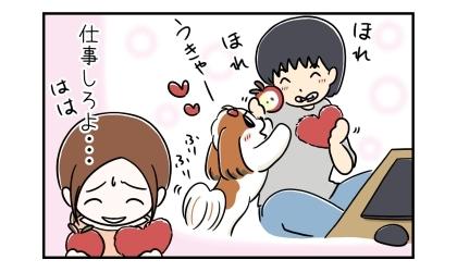 仕事中に犬とおもちゃで遊ぶ犬。仕事しろよ…、犬のおもちゃを手に苦笑する私