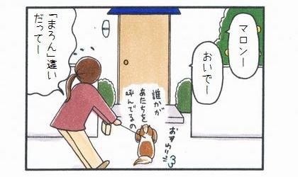 「まろん」違い 1-4