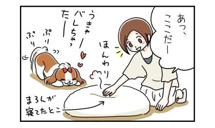 床の上に置かれたビーズクッションを触って、あっ、ここだー。犬が寝ていたところがほんわりと温かい