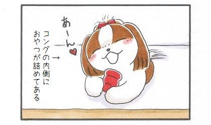 お留守番のお供♪コング-1