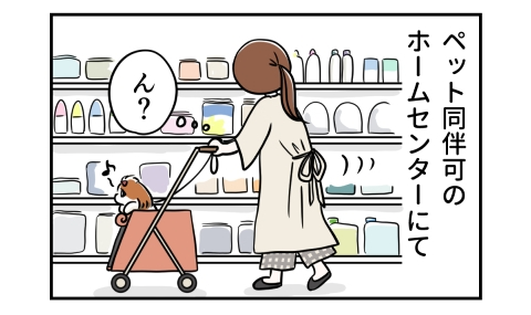 ペット同伴可のホームセンターにて。犬をカートに乗せて商品を見て歩く。