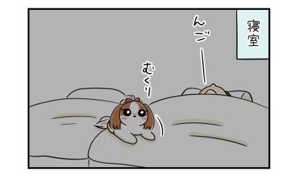 夜、寝室にて。むくりと起き上がる犬。隣では夫が高いびきで寝ている