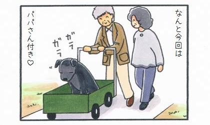 なんと今回はパパさん付き。カートに乗った黒いラブラドール・レトリーバーを押す高齢の夫婦
