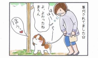ちっこポイント復活!-4