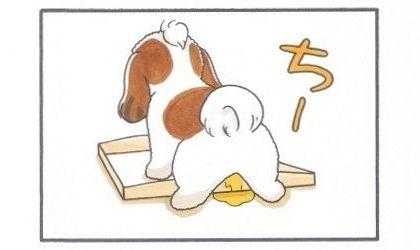 つめが甘いトイレ-3