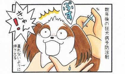 狂犬病予防注射のお知らせ-2