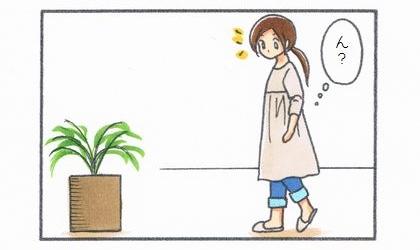 ん?犬が食べた観葉植物のテーブルヤシを見て何か気づく
