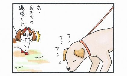vs 大型犬 ~縄張り争い~-1