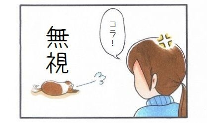 おいで!シカト編-4
