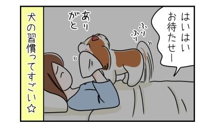 はいはい、お待たせー。犬の口を拭いてあげる飼い主。ありがと、としっぽを振って喜ぶ犬。犬の習慣ってすごい