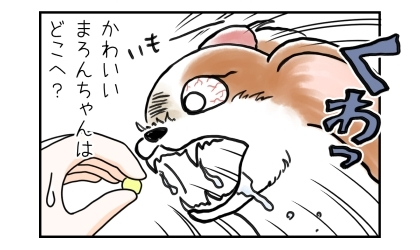 差し出された焼き芋に食らいつく犬。その顔はまるで妖怪のよう。かわいい犬はどこへ?