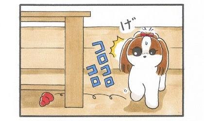 お留守番のお供♪コング-3