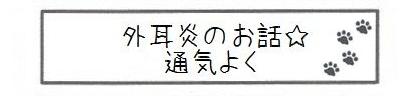 外耳炎のお話☆通気よく-0