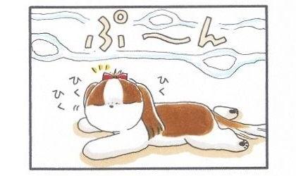 犬用ホットケーキ-3