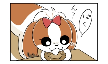 ドライフードにドライミートをトッピングしたご飯を食べる犬