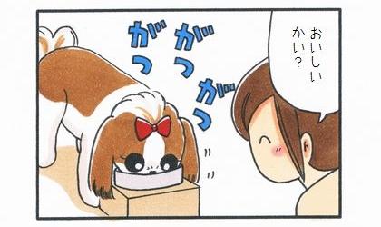 試供品のドッグフード-3