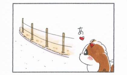 犬が道路沿いに設置された杭を見て何かを思い出す