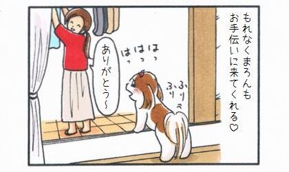 もれなく犬も洗濯物の取り込みのお手伝いに来てくれる。ありがとう~