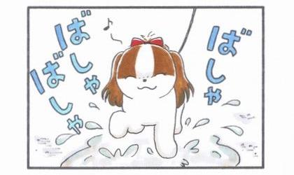 雨上がりのお散歩-3
