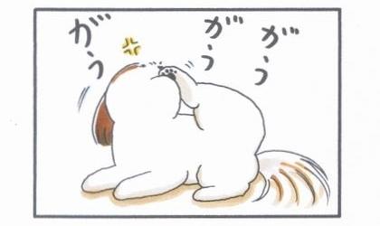 足を舐める犬-3