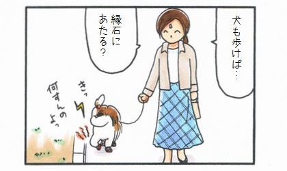 犬も歩けば…-4