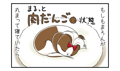 もしも犬が丸まって寝ていたら(まるっと肉団子状態)