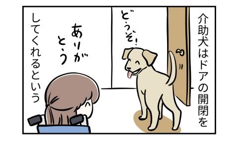 介助犬はドアの開閉をしてくれるという。どうぞ、ドアを開けた犬。ありがとう、車椅子の人