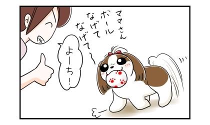 犬がボールをくわえてやってきた。ママさん、ボール投げて投げて~