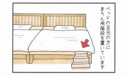 犬用階段凸ショートカット編-1
