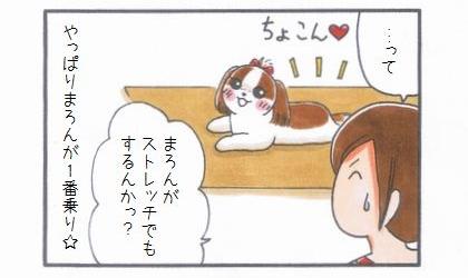 敷物1番乗り -ヨガマット編--4