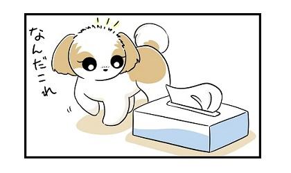 箱ティッシュe 4コマ犬漫画 ぷりんちゃんねる