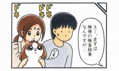 犬の健康診断の結果を聞いた。まずは検便の検査結果なんですが