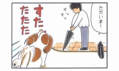ひよことお出迎え-2