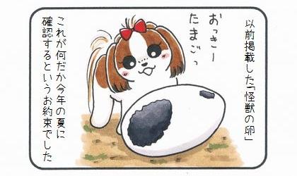怪獣の卵 その後-1