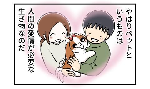 やはりペットというものは、人間の愛情が必要な生き物なのだ