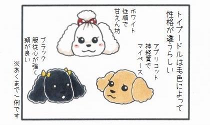 毛色でみる犬の性格-1