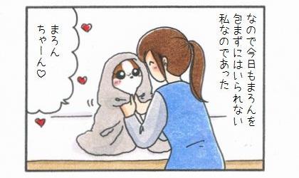 愛犬を「包んで」みよう♪-4