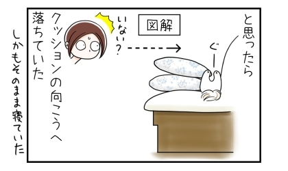 ソファの上に積まれたクッションの上で寝ていた犬がいなくなったと思ったら、クッションの向こうへ落ちていた。しかもそのまま寝ていた