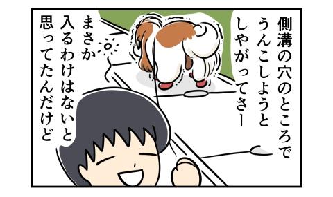 犬が側溝の穴のところでうんこしようとしやがってさー、まさか入るわけはないと思ってたんだけど