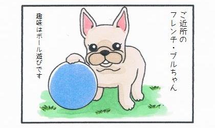ご近所のフレンチ・ブルドッグちゃん。趣味はボール遊びです