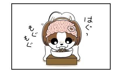 犬がご飯(手作り+ドッグフード)を食べている