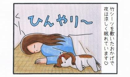 竹シーツの弊害-1