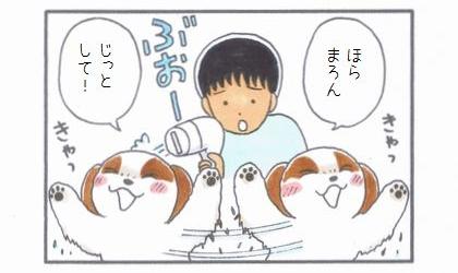 ビューティフル・まろん-2